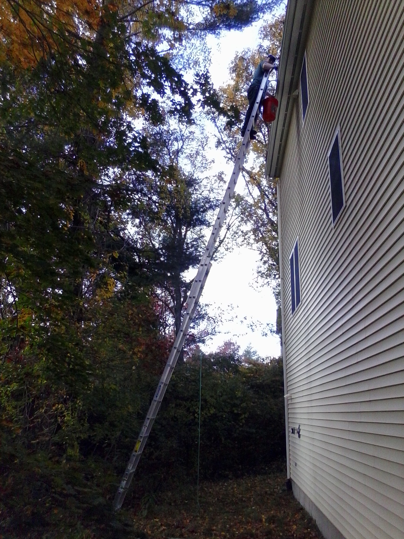 Gutter cleaning - Wareham