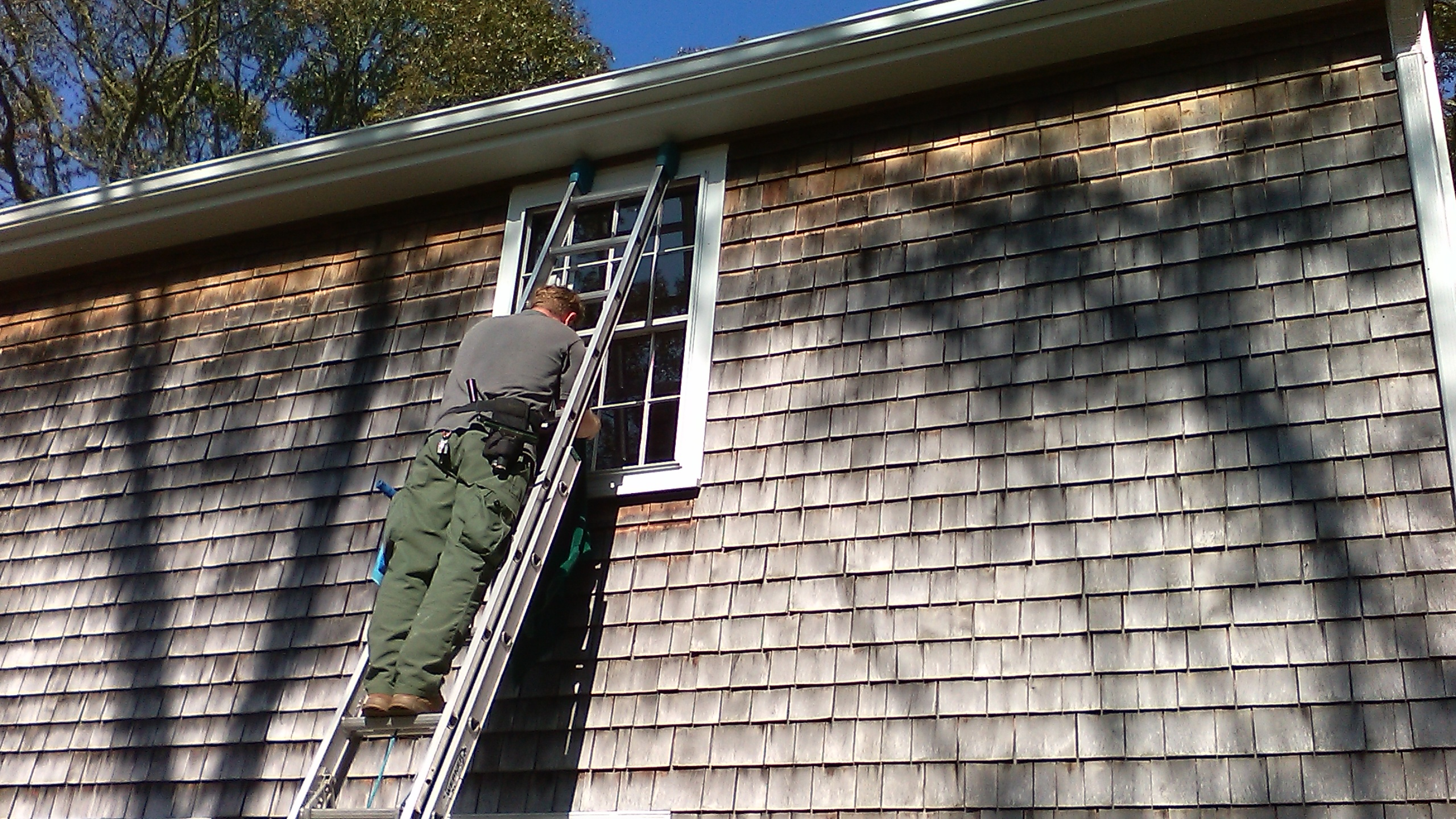 Window cleaning - Wareham